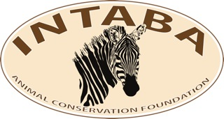Intaba-Logo